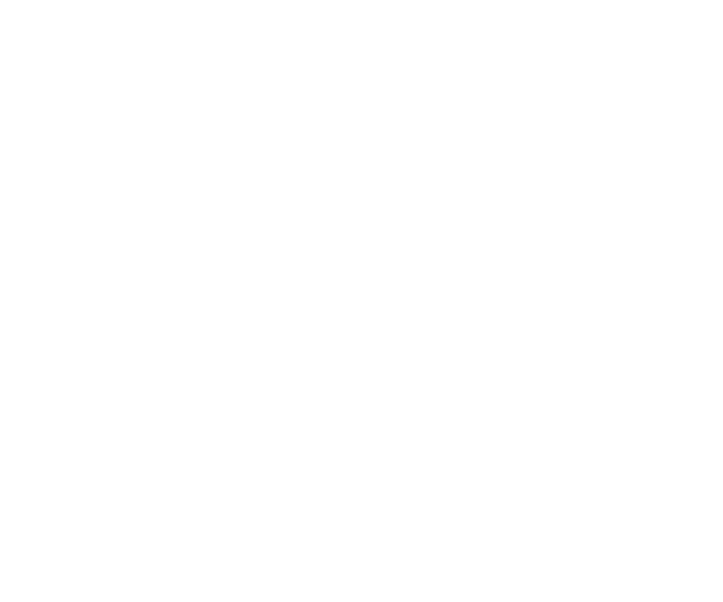 Mittermeiers Alter Ego